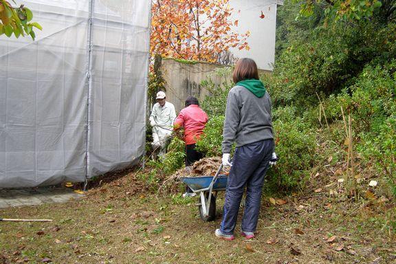 volunteer_20171118-09.JPG